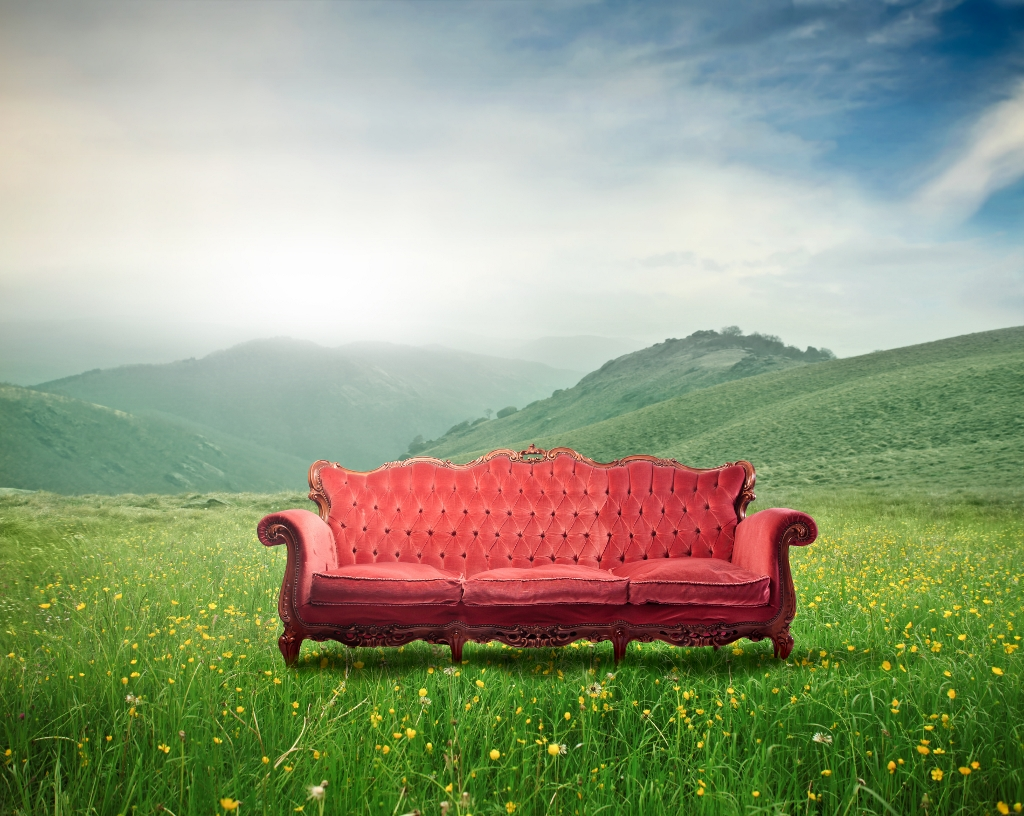 Psychotherapy & Psychoanalysis Couch